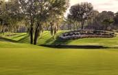 Innisbrook        Salamander Golf & Spa Resort