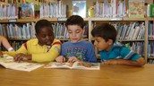 Allen Brook School Library Notes