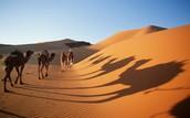 What's the Sahara Desert?