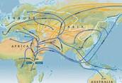 Humans Migrate:
