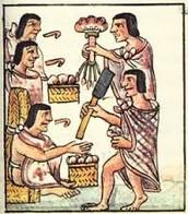 Aztec family