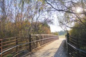 Big bridge on the trail-but  it could quite possible be gone soon