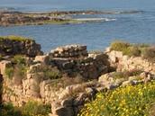 תנאי התיישבות ומקורות הפרנסה במישור החוף