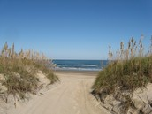 What Is A Sand Dune And Why Are They Important?