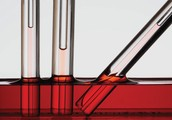 Capillarity of Liquids