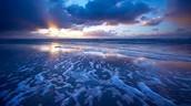 Our healthy ocean