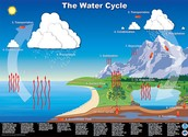 What is a Water Cycle?