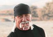 Hulk Hogan's Massive Brain