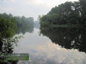 The Piney woods outdoor Activities