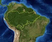 - 6 milijuna kvadratnih kilometara u porječju Amazone