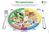 Diagram of Proper Nutrition