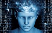 Correlates of consciousness