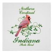State Bird - Cardinal
