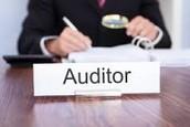 Financial Auditors