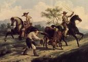 California ranchos
