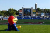 Kansas JayHawk on football field