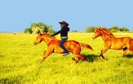 Riding Horses!