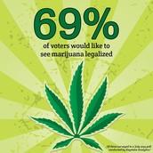 Percentage of voters in favor of legalizing marijuana