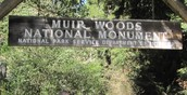 Editorial: Raising price to visit Muir Woods?