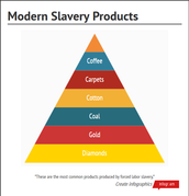 Slavery Products