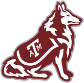 #3 Texas a&m  University