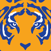 Tigres UNAL