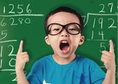 BlueBird Mathematics ADVANCED EDITION