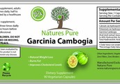 Does Garcinia Cambogia Really Help Myself Lose Weight