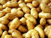 Best Potatoes in the World
