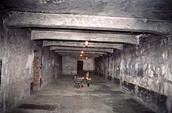 Birkenau gas chamber