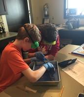 Riyan and Tanner hard at work