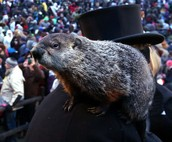 Groundhog's Day Tradition Has Young Fans
