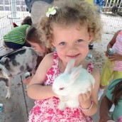 Baby Farm Animals and Egg Hunt