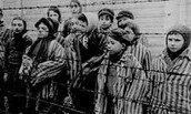 People in a Concentration Camp