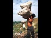 עבדות ילדים בקצרה