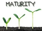 Maturity Improvement