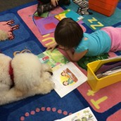 Preschooler Reads with Therapy Dog