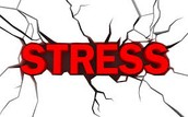 Stress can be very overwhelming.