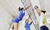 Allez jouer au volleyball! 🎽