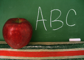 Schools of Choice and Transfer Information