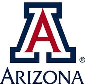 #3 Arizona University