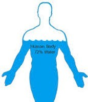 Water takes up about 70% of our bodies