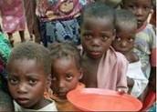 Solve world hunger