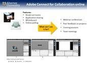 Webinars/Virtual Classrooms