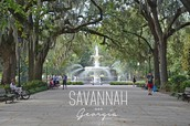 Highlights from Savannah  @ Georgia School Counselor Association Conference