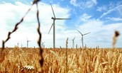 How Wind Energy affects the Environment