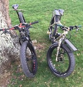 Felt Electric-assist fat bikes