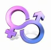 What are rigid sex roles?