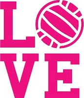 ~I love Volleyball~