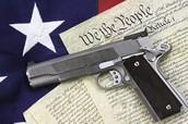 Jill Stein on gun Control